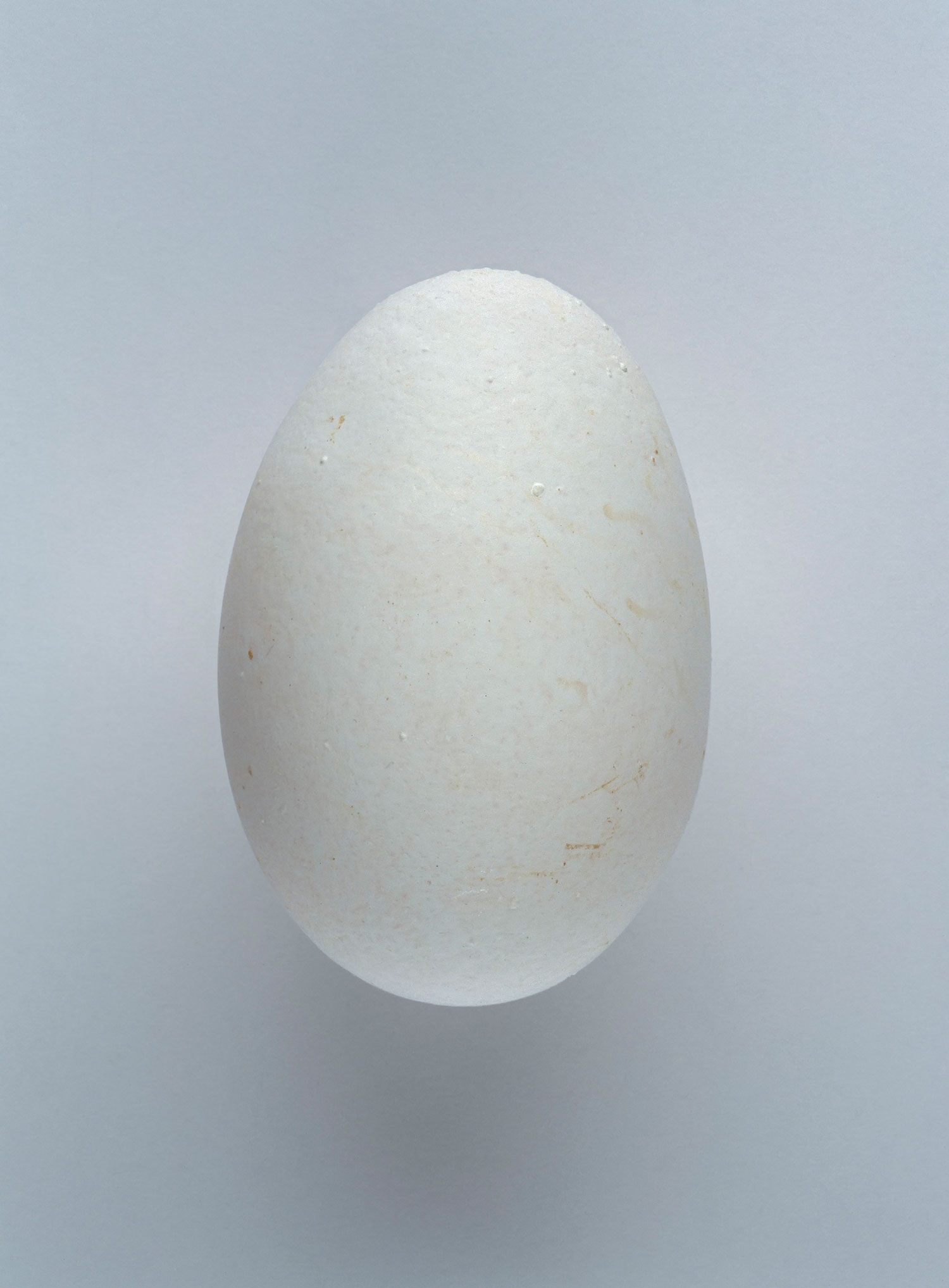 Fleischmann-Dirk_One-Hundred-And-Sixty-Two-Out-Of-Two-Billion-Eggs_2004_1500x2035